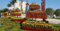 Quảng Nam: Độc đáo sản phẩm nhà nông tưng bừng nơi phố thị