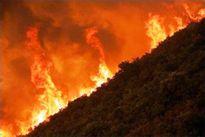 Hàng trăm người tham gia dập lửa ở Vườn quốc gia Hoàng Liên