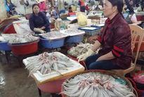 Thanh Hóa: Cá khoai – món bình dân tăng giá đột biến