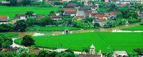 Ký ức trao truyền của tâm hồn Việt