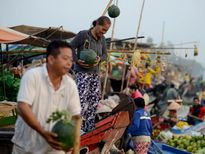 Ảnh: Chợ Tết trên bồng bềnh sông nước