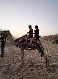 Fan nữ Chelsea Việt Nam cưỡi lạc đà ở Dubai