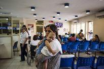 Colombia: Hơn 5.000 thai phụ nhiễm virus gây teo não Zika