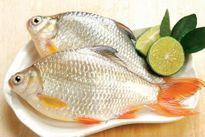 Những loại cá rẻ tiền không ăn bạn đã sống phí cả đời