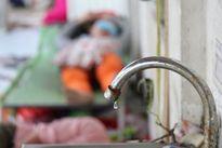 Phóng sự ảnh: Xứ dừa khát nước ngọt chưa từng có