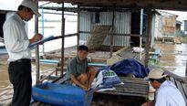 Xâm nhập mặn chưa ảnh hưởng nhiều đến cá nuôi bè
