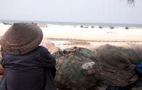 Ngư dân miền Trung: Những ngày khốn khó đang ở trước mặt