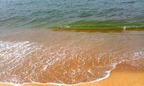 Xuất hiện vệt nước đỏ bất thường, dài 10 km trên biển Hà Tĩnh