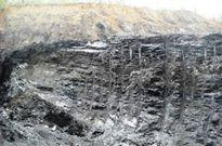 Vụ C.ty than 91 phá rừng đào than: Quảng Ninh vào cuộc rốt ráo rồi…lặng thinh?