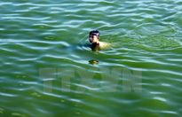 Lạng Sơn: Rủ nhau tắm sông, 4 học sinh đuối nước thương tâm