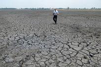 Thiếu minh bạch chi 108 tỷ đồng hỗ trợ hạn hán ở Tây Nguyên