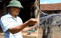 Ngư phủ tiết lộ bí quyết chinh phục cá lăng khủng trên sông Sêrêpôk