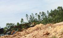 Cơ sở gỗ dăm trái phép vẫn ngang nhiên hoạt động