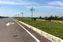 Đường trục trung tâm khu đô thị mới Mê Linh: Vì sao vẫn chưa được sử dụng?