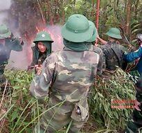 Yên Thành huy động trên 200 người khống chế lửa rừng tại Động Cao Sơn