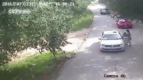 Khoảnh khắc kinh hoàng: Cô gái bị hổ vồ lôi đi khi vừa ra khỏi xe ô tô