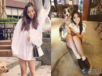 Con gái đại gia Đài Loan trở thành trò hề của dân mạng