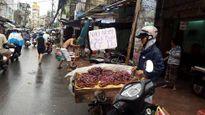 Trái cây giá rẻ tràn ngập Sài Gòn, nhưng vẫn ế hàng