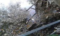 Đây là lý do cá chết trắng mặt hồ Mật Sơn