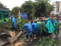 Hàng trăm thanh niên Thủ đô tham gia khắc phục hậu quả sau bão