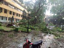 Hà Nam thiệt hại nặng nề do bão số 1