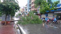 Hà Nội: Cây đổ, vỉa hè bật tung, ngập úng nhiều tuyến phố