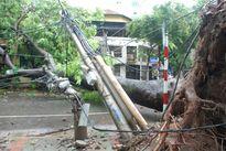 Thợ điện Thủ đô căng mình khôi phục lưới điện sau bão số 1