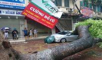 Chỉ đạo của Thủ tướng Chính phủ: Tập trung khắc phục hậu quả bão số 1