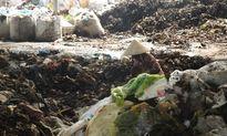 Dân khổ vì bãi rác quá tải