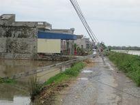 Nam Định: Hai người tử vong sau cơn bão số 1