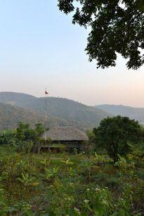 Ngôi nhà ở sườn đồi Việt Nam xuất hiện ấn tượng trên tạp chí kiến trúc Tây