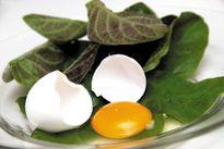 Bị những bệnh này chỉ cần ăn trứng gà là khỏi không cần thuốc tây