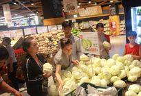 LOTTE MART hỗ trợ nông dân tiêu thụ bắp cải Đà Lạt