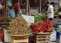 Nhãn lồng Hưng Yên 'nhái' tràn ngập thị trường Hà Nội