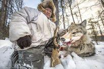 Những người săn sói ở Siberia