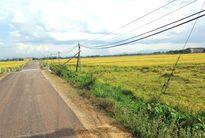 Lấy tiền hỗ trợ đất lúa của dân để kiên cố hóa kênh mương, đúng hay sai?