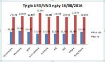 Tỷ giá USD/VND hôm nay (16/08): Giữ vững phong độ