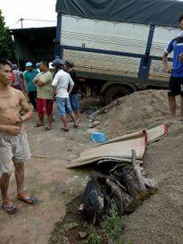 Gia Lai: Xe tải tông xe máy, 6 người thương vong