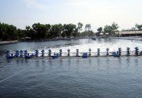 Trắng tay vì sản phẩm xử lý môi trường nuôi trồng thủy sản kém chất lượng