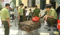 Đồng Tháp: Báo động thực trạng săn bắt, buôn bán động vật hoang dã