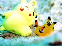 Kinh ngạc loài sên biển 'giống như đúc' Pikachu