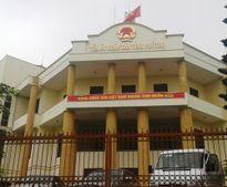 Phú Thọ: 50 bị hại vụ lừa đảo đồng loạt kêu oan cho các bị cáo