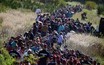 Hy Lạp kêu gọi EU đẩy nhanh kế hoạch phân bổ người nhập cư