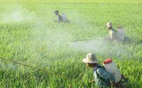 Người Việt bị đầu độc bởi hàng nghìn loại hóa chất bảo vệ thực vật