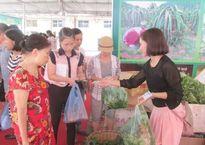Tuần lễ hàng Sơn La tại Hà Nội