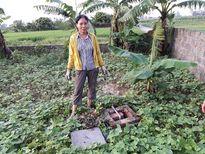 Dự án nhà máy nước sạch KCN Phú Nghĩa, 10 năm vẫn chưa đạt đồng thuận