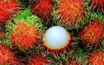 Cách phân biệt các loại quả chín cây và chín thuốc
