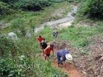 Vượt núi rừng tận thấy vàng tặc hoành hành ở Ba Lin