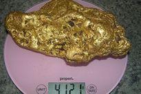 Người đàn ông đào được cục vàng 4kg mà không hề biết