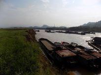 Sông Lô (Tuyên Quang) : Oằn mình kêu cứu vì khai thác cát